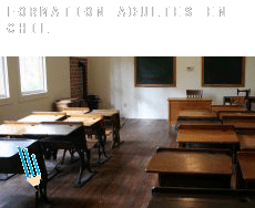 Formation adultes en  Chili