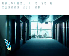 Universite à  Mato Grosso do Sul