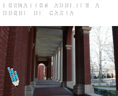 Formation adultes à  Duque de Caxias