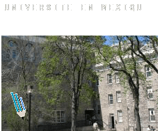 Universite en  Mexique